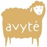 www.avyte.lt