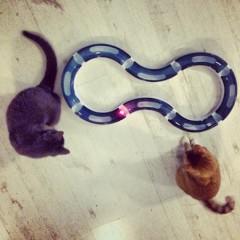 Super roller Kit/Žaidimų trasa